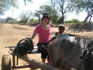 nicaragua horse cart