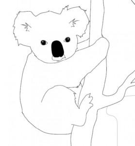 Koala bear outline