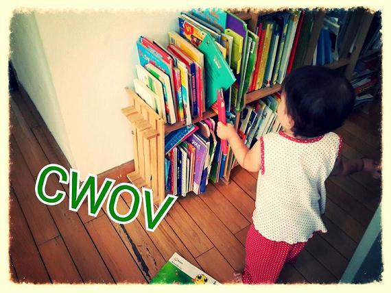 Bookshelves Around the World