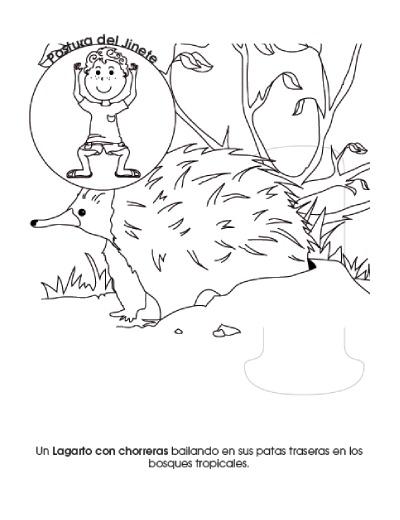 lucas-animales-austranianos3-400