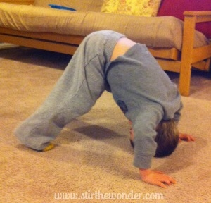 Downward Facing Dog Pose by Stir the Wonder
