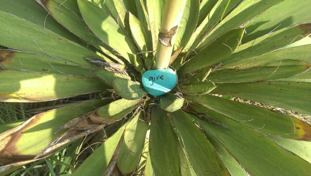 Acts of Kindness: A Love Rocks project by Happy Sunshine Yoga