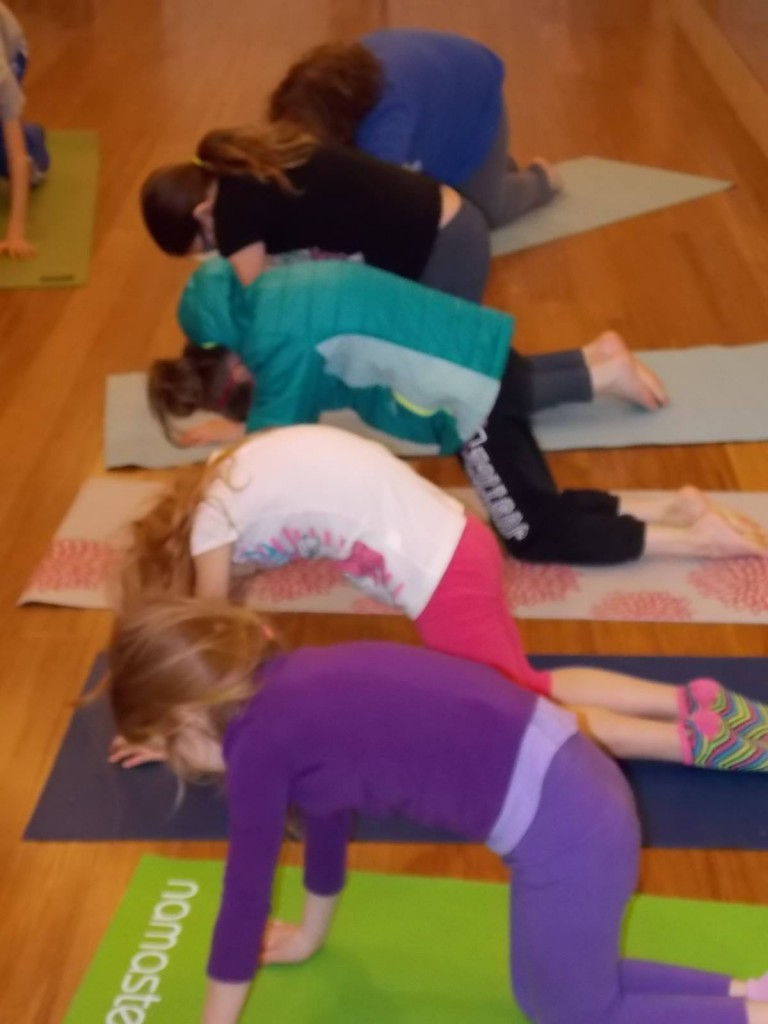 Cat Pose by OMazing Kidz Yoga