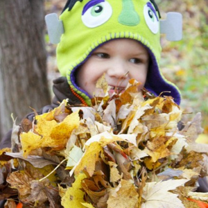 Leaf Scramble
