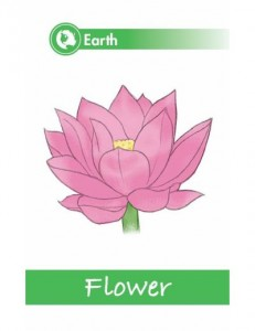 Yoga Poses for Kids Cards - Flower