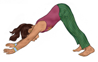 Downward Facing Dog Pose Pretend To Be A Triangle