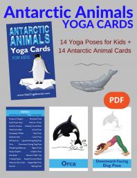 Antarctic Animals Yoga Cards for Kids PDF Download (English) | Kids Yoga Stories