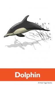 North American Animals Alphabet Yoga Cards - Dolphin | Kids Yoga Stories