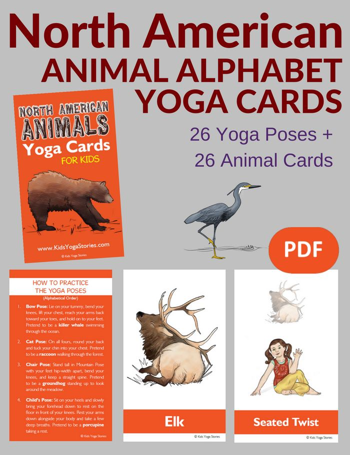 North American Animals Alphabet Yoga Cards for Kids PDF Download (English) Image
