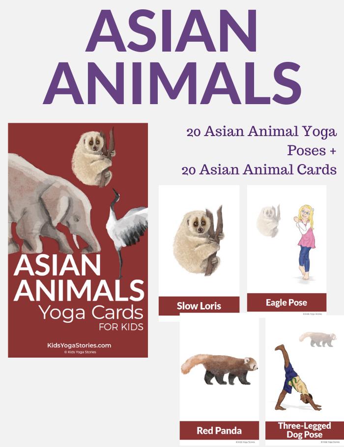 asian-animals-yoga-cards