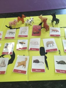 Farm Animals Yoga Cards for Kids - laminated for durability | Kids Yoga Stories
