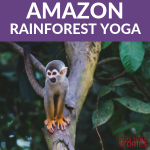 5 Amazon Rainforest Animals Yoga Poses for Kids