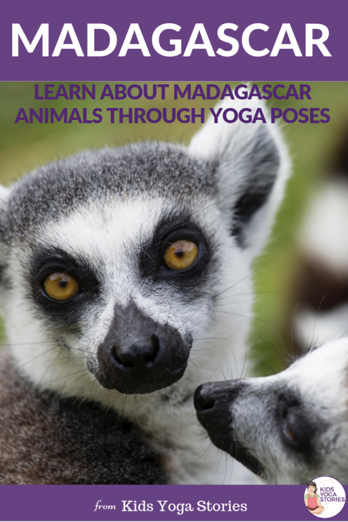 Learn about Madagascar Animals through Yoga Poses | Kids Yoga Poses