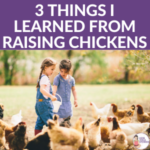 What you can learn from chickens | Kids Yoga Stories