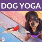 Dog Yoga for Kids | Kids Yoga Stories